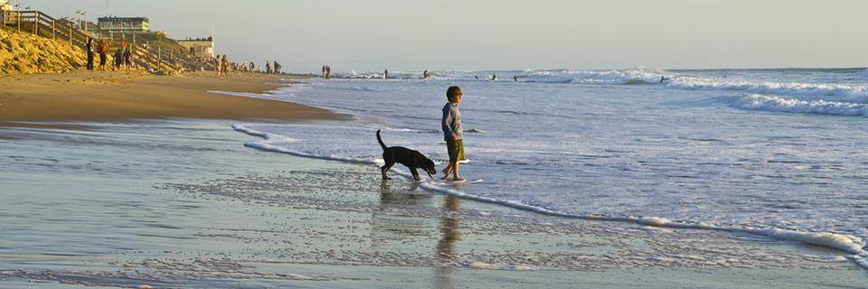 Aquitaine beach with a boy and his dog